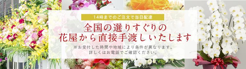 14時までのご注文で当日配達 全国の選りすぐりの花屋から直接手渡しいたします ※お受付した時間や地域により条件が異なります。 詳しくはお電話でご確認ください。