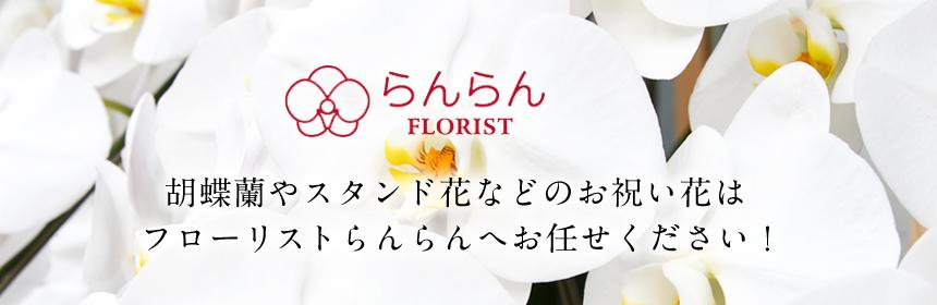 胡蝶蘭やスタンド花などのお祝い花はフローリストらんらんへお任せください!