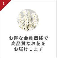 お得な会員価格で高品質なお花をお届けします