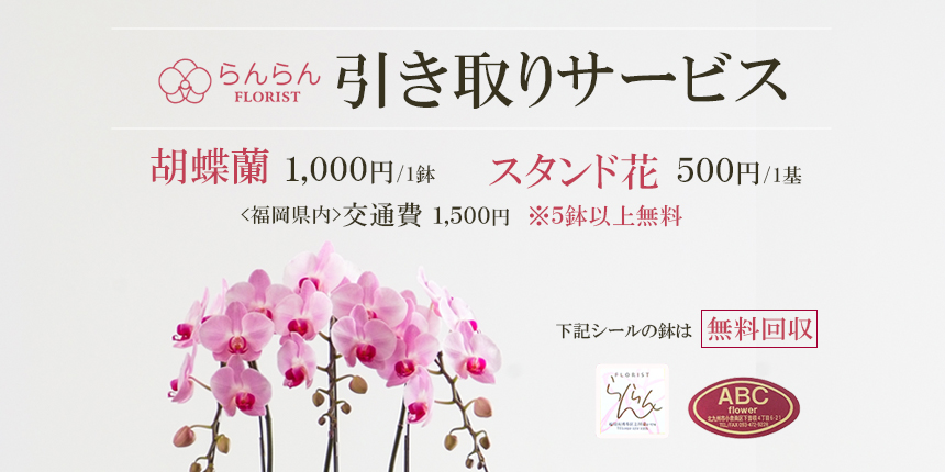 胡蝶蘭・スタンド花の引き取りサービス