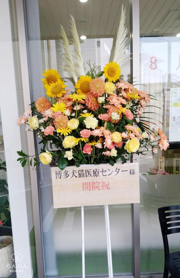 博多犬猫医療センター様へお祝いスタンド花を納品しました[開院祝い花]