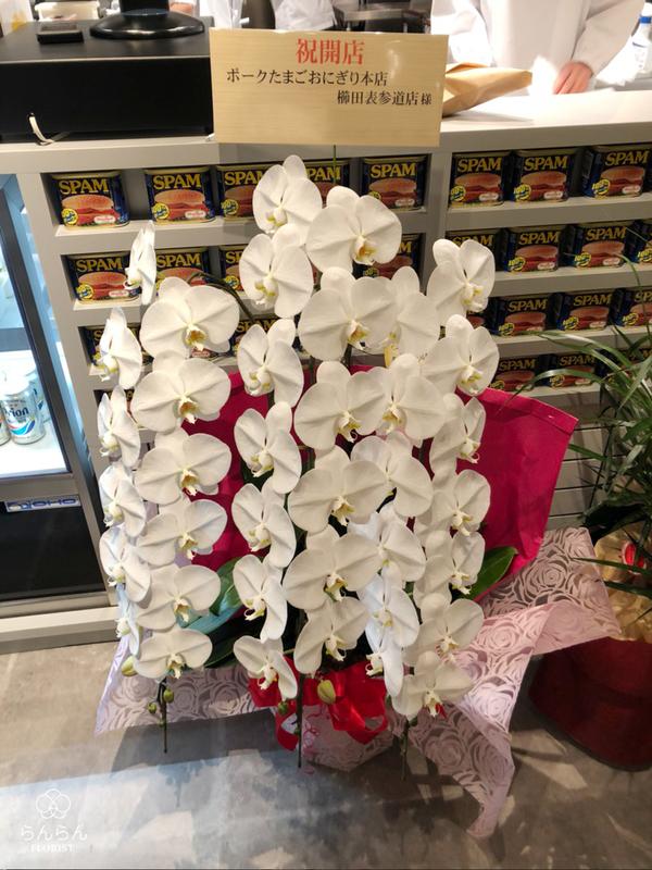 ポークたまごおにぎり本店 櫛田表参道店様へ胡蝶蘭を納品しました[開店祝い花]