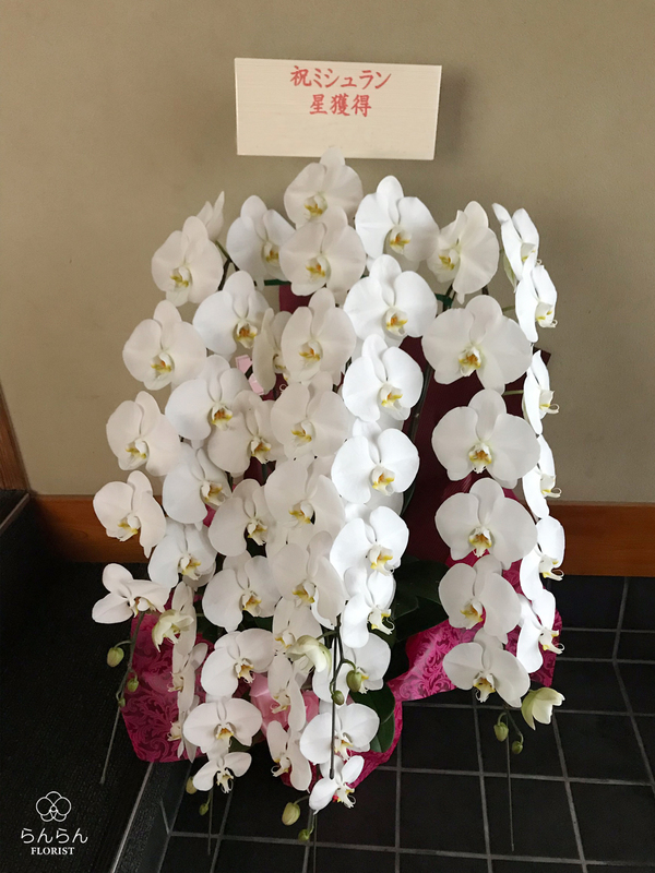 ニシムラタカヒト ラ・キュイジーヌ・クリアテビィテ様へ胡蝶蘭を納品しました