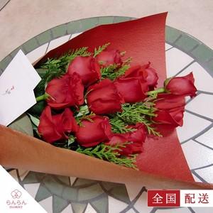 ダーズンローズ 薔薇(バラ)の花束 赤 12本(1ダース)【全国配送】