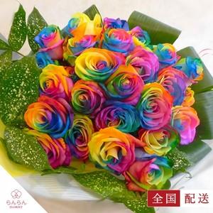 レインボーローズの花束 虹色薔薇 10本【全国配送】