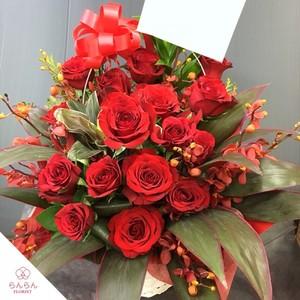 【福岡限定】赤バラアレンジ花(おまかせ)[自社配達]
