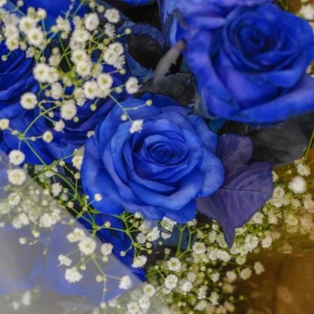 ブルーローズ 青薔薇の花束 20本 [全国配送]
