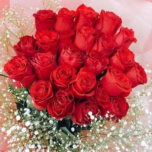 プレミアムローズ 大輪薔薇 バラの花束 赤 20本【全国配送】